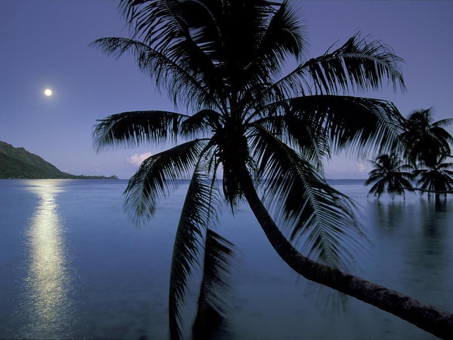 Казкове Море Природа, Море id239873238