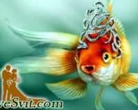 Казка про Золоту Рибку, або про тих, хто не знає, чого хоче від життя.